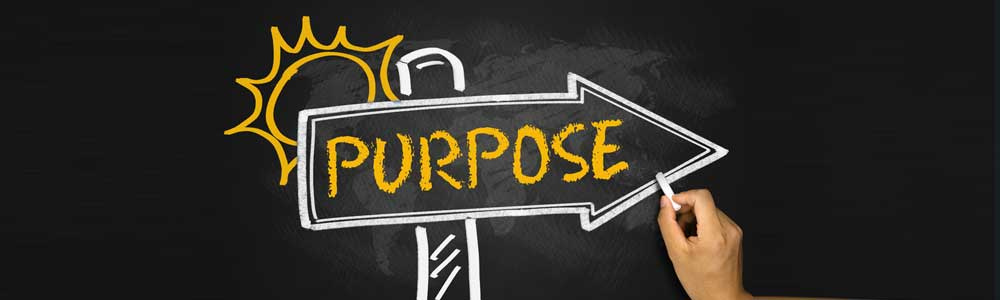The Sole Purpose of Your Enterprise